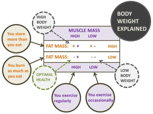 bodyweight explained by FFT