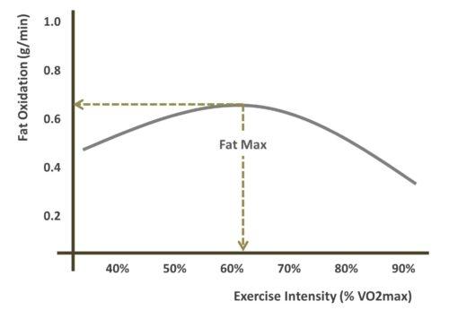 fatmax by intensity2